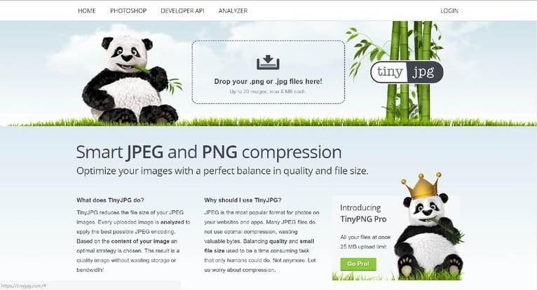 tingpng-jpg-image-compression-site.jpg